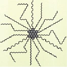 texture scheme